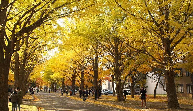 北海道大学とAIの医学教育への応用をテーマとした共同研究を開始